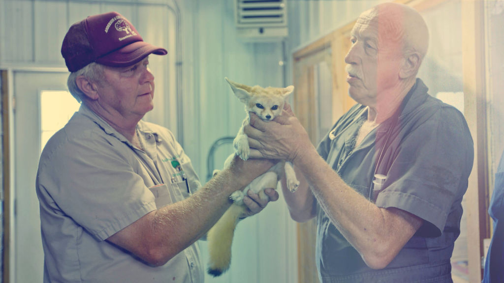 The Incredible Dr  Pol - National Geographic for everyone in everywhere